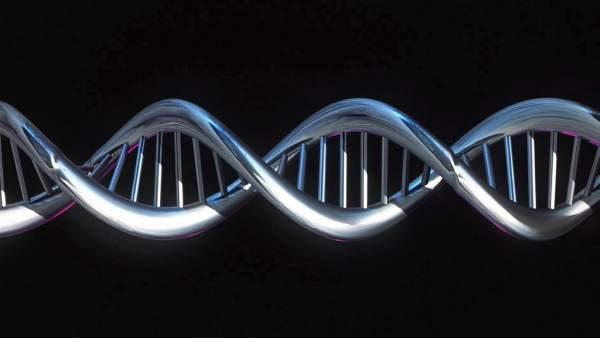 Secuencia del genoma