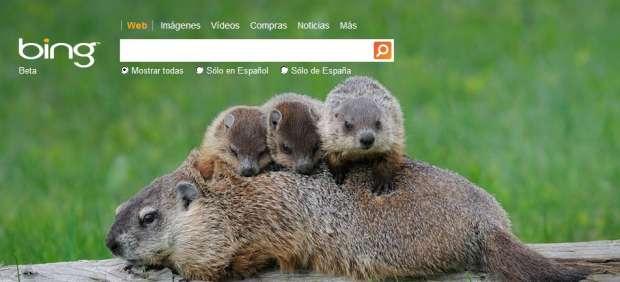 Bing introducirá la opción de 'me gusta' en los resultados de búsqueda