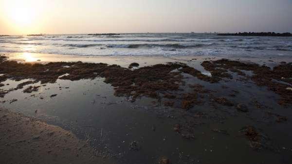 Playas cerradas por el derrame de BP