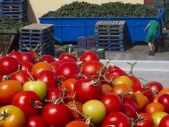 Agricultura y pesca pierden peso en la creación de empleo
