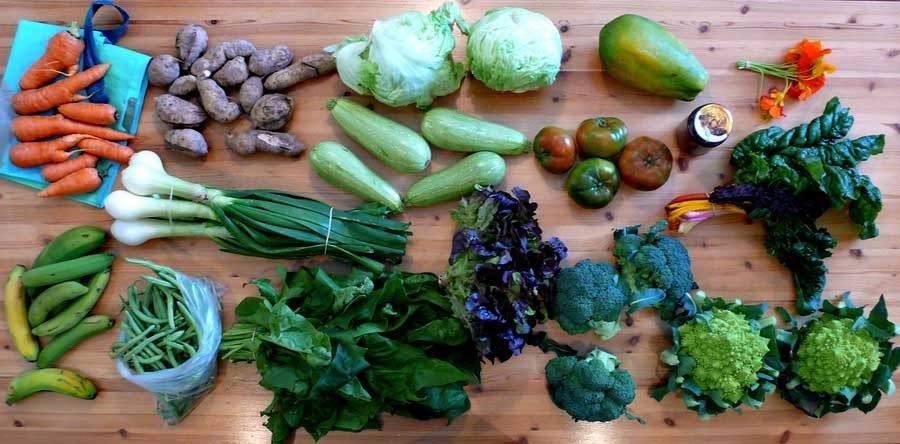 Las frutas y verduras de temporada durante el mes de abril y sus