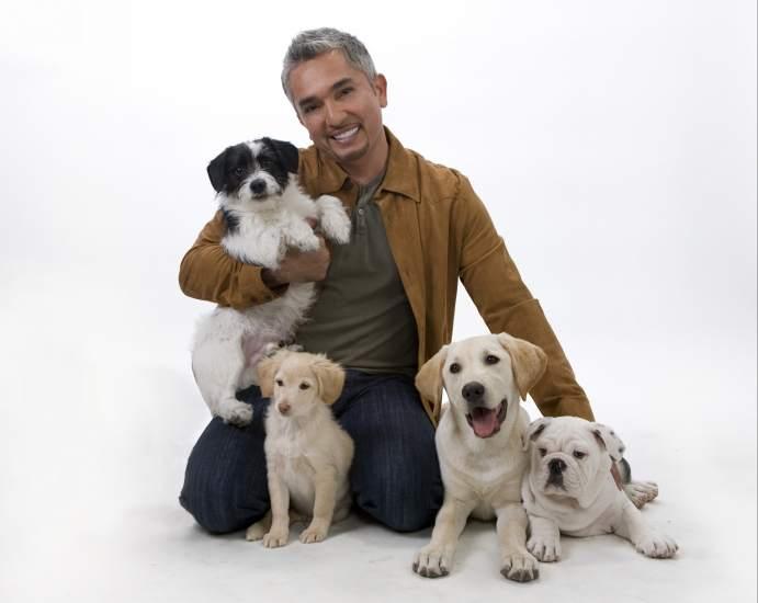 C sar mill n el hombre deber a aprender mucho de los perros - Es malo banar mucho a los perros ...