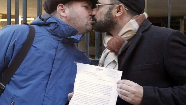 Recurso tribunal constitucional matrimonio homosexual