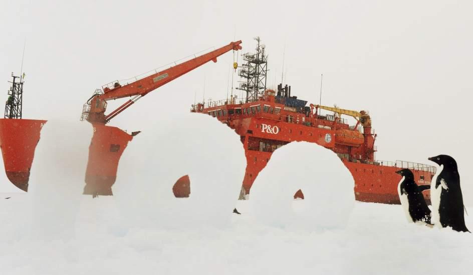 Expedición conmemorativa en la Antártida