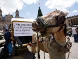 'Zorreros' en Colombia