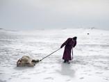'Environmental migrants: the last illusion. Ulaanbaatar, Mongolia'