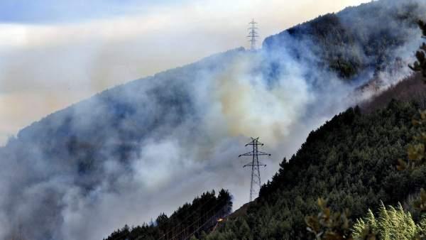 Incendios en el Pirineo.