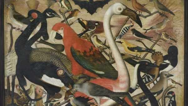 'Les Oiseaux'