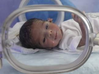 Bebé en una incubadora