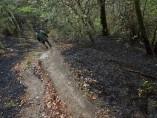 As Fragas do Eume, con 750 hectáreas menos de verde