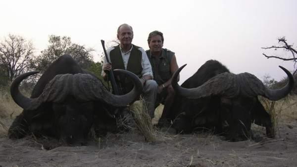 El rey cazando búfalos