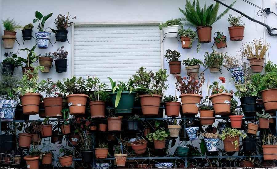 un balcn repleto de plantas y macetas flickrmanel