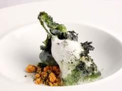 Cocina con plancton vegetal