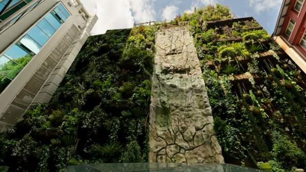 Ciudades m s verdes gracias a los jardines verticales for Para que sirven los jardines verticales