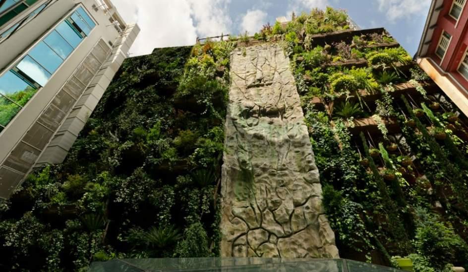 Ciudades m s verdes gracias a los jardines verticales for Imagenes de jardines verticales