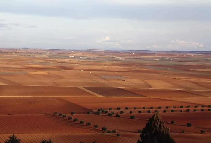 Resultado de imagen de ver imágenes de los campos de Albacete