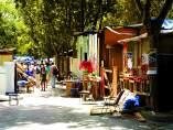 Campamento Sintel