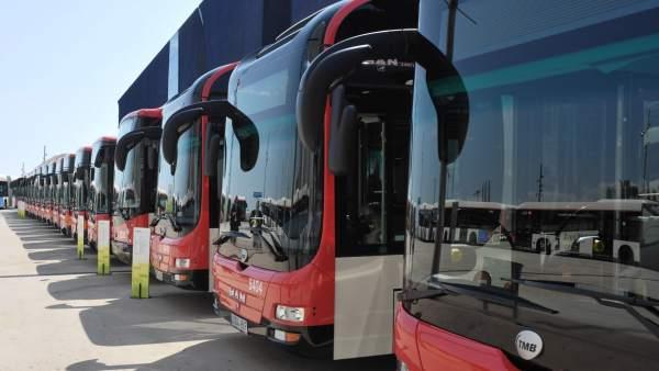 Buses de Barcelona.