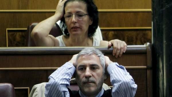 Llamazares y Fernández Moya