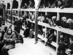 Siete historias de amor nacidas en los campos de concentración nazis