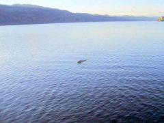 Científicos analizarán el ADN del lago Ness para saber si existe el monstruo