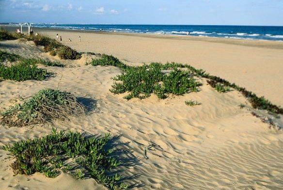 La mejor playa de la Comunidad Valenciana
