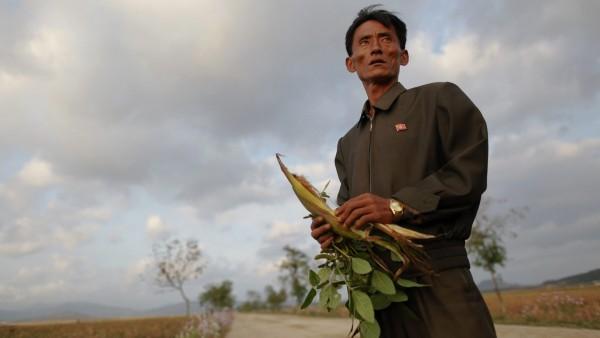 Crisis alimentaria en Corea del Norte