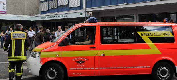 Ambulancia en el zoo de Colonia