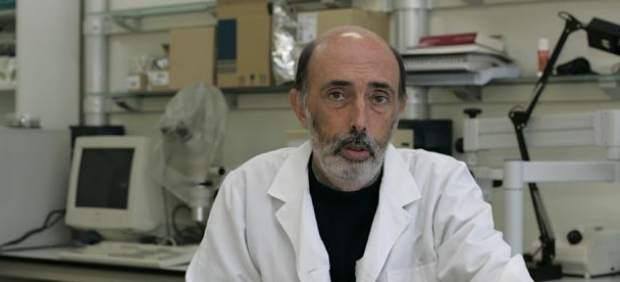 Francisco Etxeberría
