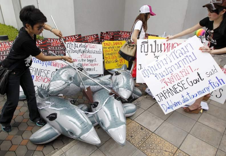 Contra la matanza de de delfines en Tailandia