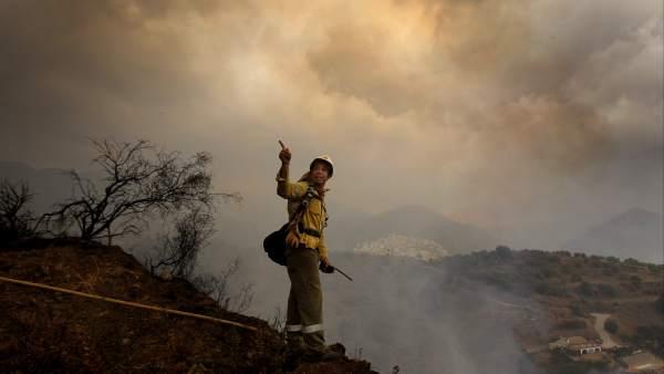 Un jardinero, autor del incendio de Málaga