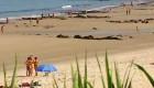 Las playas gallegas, sin socorristas