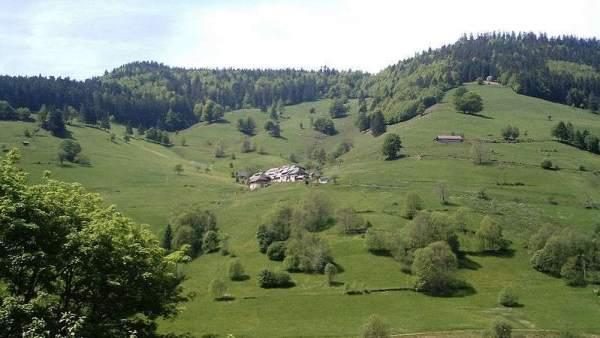 Resultado de imagen de Selva Negra Alemania