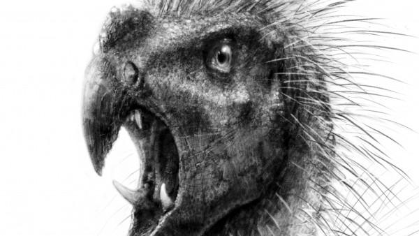 Dinosario enano