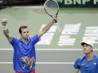 Stepanek - Berdych
