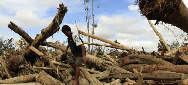 Las autoridades filipinas elevan a 647 el número de muertos provocados por el tifón 'Bopha'