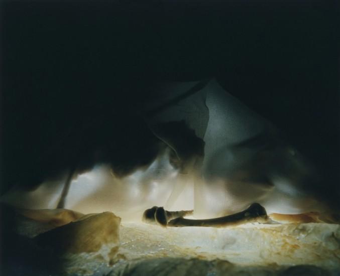 'Cocoon'. En su acercamiento heterodoxo a la fotografía de comida, la artista crea imágenes que combinan