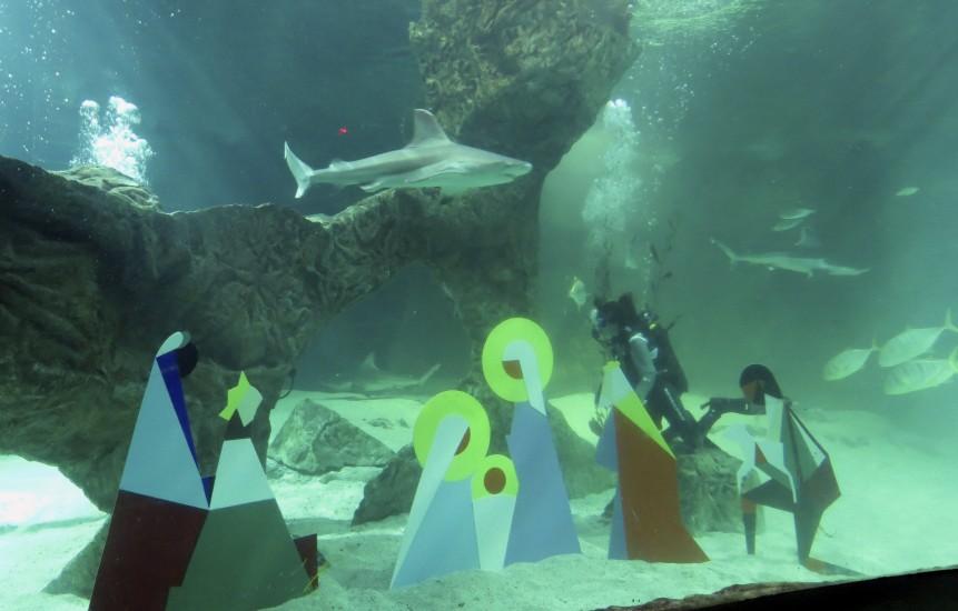 belén de acuario de Madrid