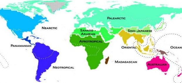 Mapa de la diversidad de los vertebrados