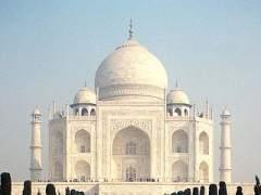 Un insecto, culpable de que el mármol del Taj Mahal se esté volviendo verde