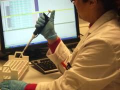 An�lisis del ADN
