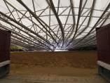 Se desploma la cubierta de Las Ventas
