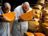 En busca del mejor queso artesanal en Holanda