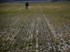 La UE adopta formalmente las nuevas reglas sobre agricultura ecológica