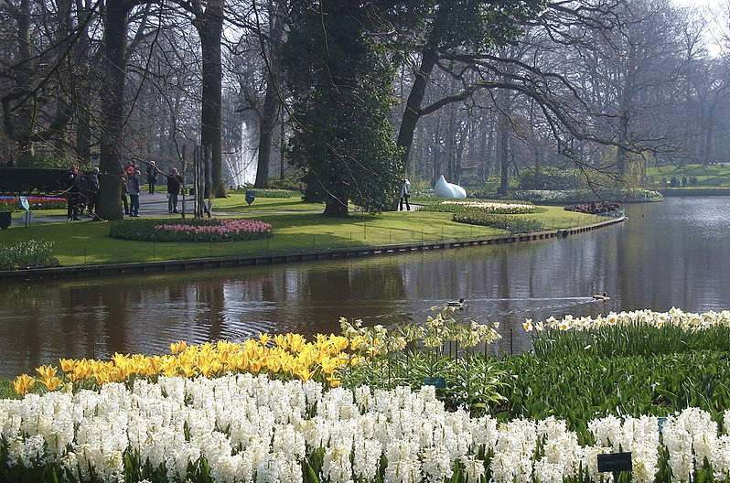los jardines keukenhof de holanda abren sus puertas con la llegada de la primavera. Black Bedroom Furniture Sets. Home Design Ideas
