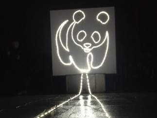 Panda iluminado