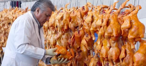 La OMS confirma que un virus de la gripe aviar ha mutado y es capaz de infectar a humanos 114639-620-282