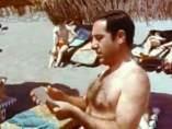 Alfredo Landa, en las turgentes playas del 'landismo'.