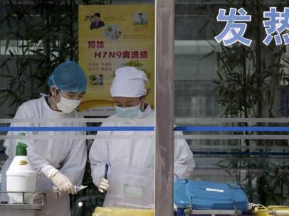 Virus H7N9, gripe aviar