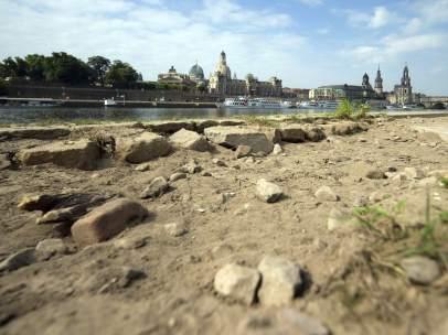 El Elba acusa la sequía